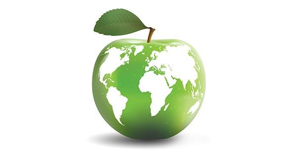 La fibra óptica es ecológica