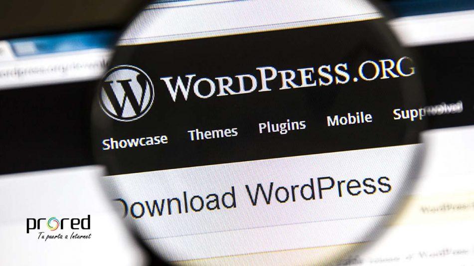 Cómo proteger Wordpress: las 20 reglas de oro