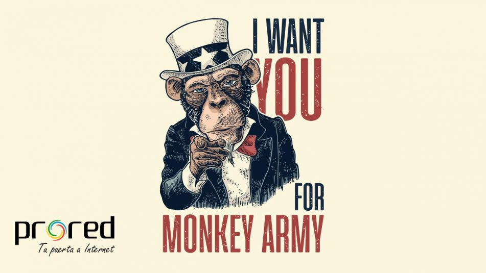 Netflix Monkey Army
